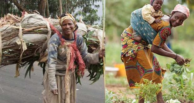 african-women-at-work