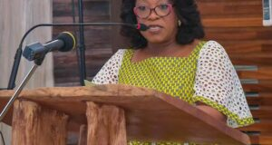 Shirley Ayorkor-Botchway,Minister of Foreign Affairs